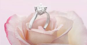 stroili diamante