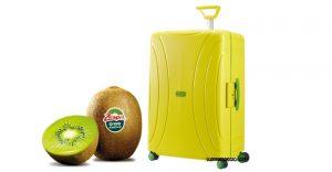 Concorso zespri collection vinci trolley e viaggio da 2 for Kiwi giallo piante acquisto