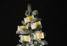 albero 200 euro
