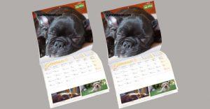 calendario isola tesori