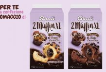 bauli muffin xl