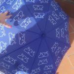 mondotop ombrello aperto