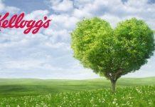 kellogg's albero bio