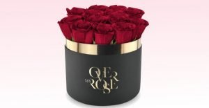 over rose