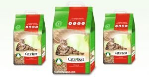 lettiera cats best
