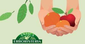 antica erboristeria frutta