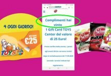 dufour gift card toys
