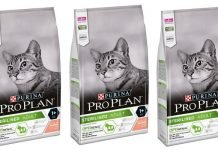 purina pro plan cat steriziled