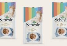 schesir kit 1 day